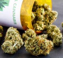 Weed delivery Mississauga products